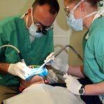 Why Dental Fillings Get Loose