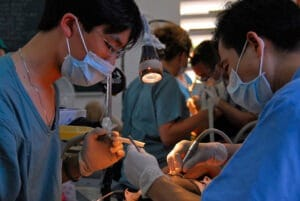 Dental Care Programs