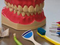 Utah Citizens May Get Affordable Dental Care
