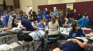 Free dental care in Colorado